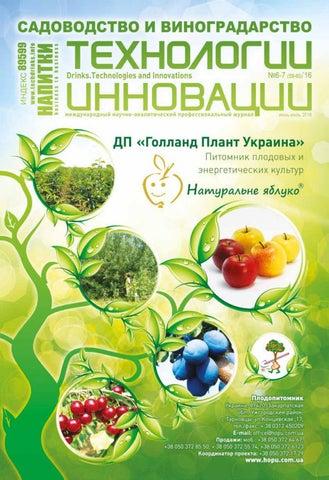 Лучший европейский виноград на земле крымского полуостроваЖенские радости