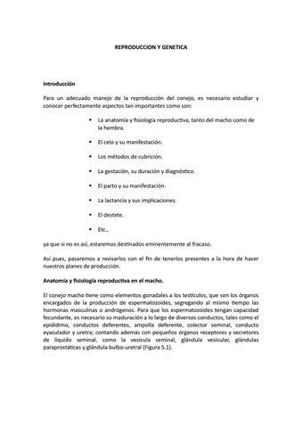 Reproduccion y genetica conejos by luispardave15 - issuu
