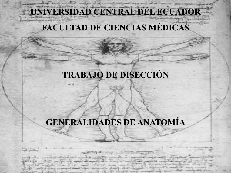 Generalidades de diseccion anatomía by APUNTES MEDICOS - issuu