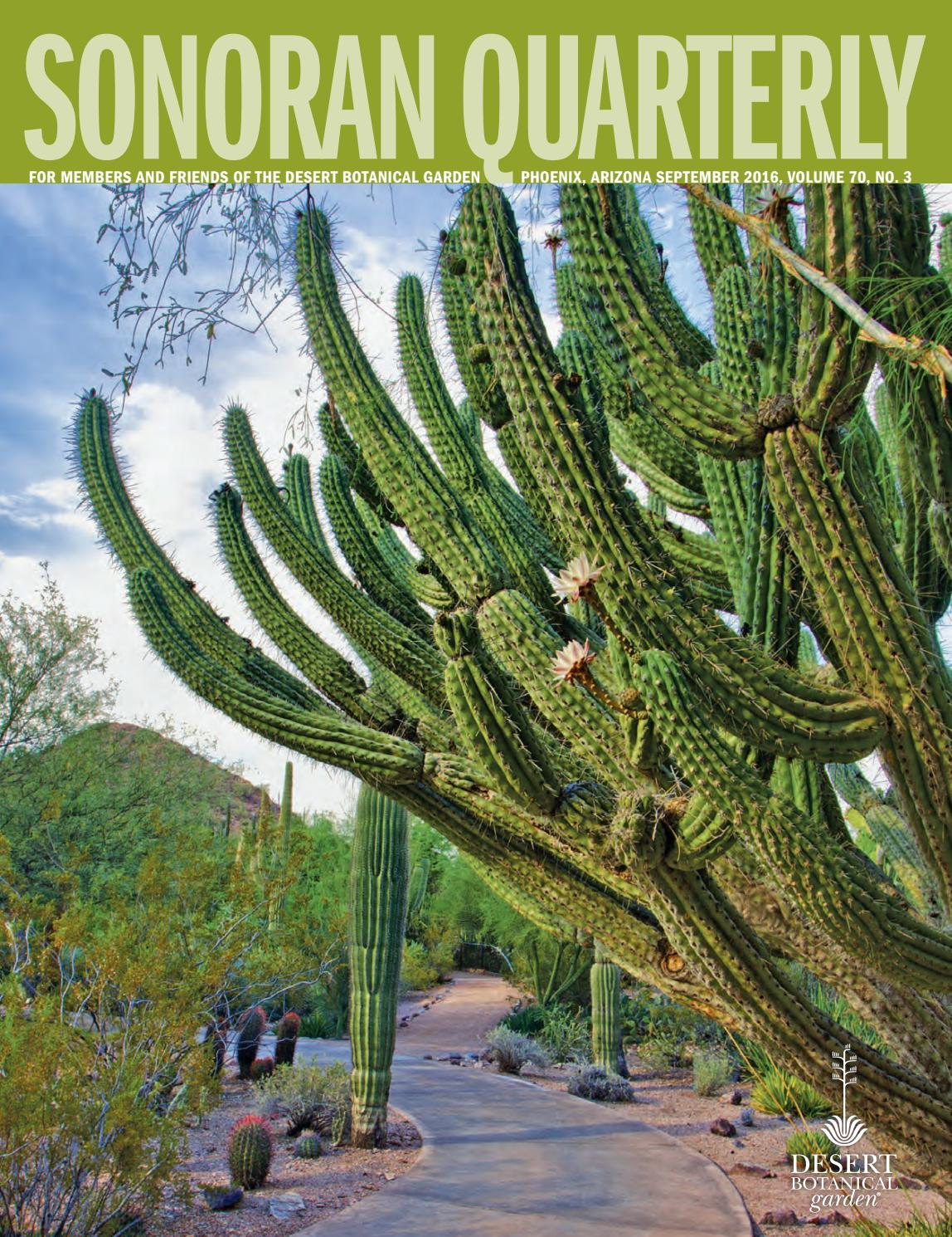 the sonoran quarterly fall 2016 volume 70 no 3 by desert