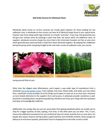 Mail Order Nursery For Wholesale Plants By Newlifenursery1 Issuu