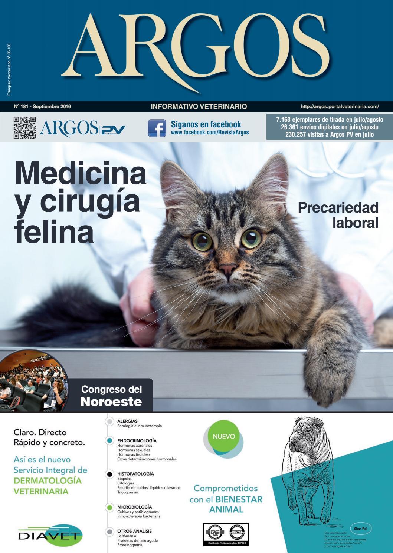 costo del bloqueo urinario del gato
