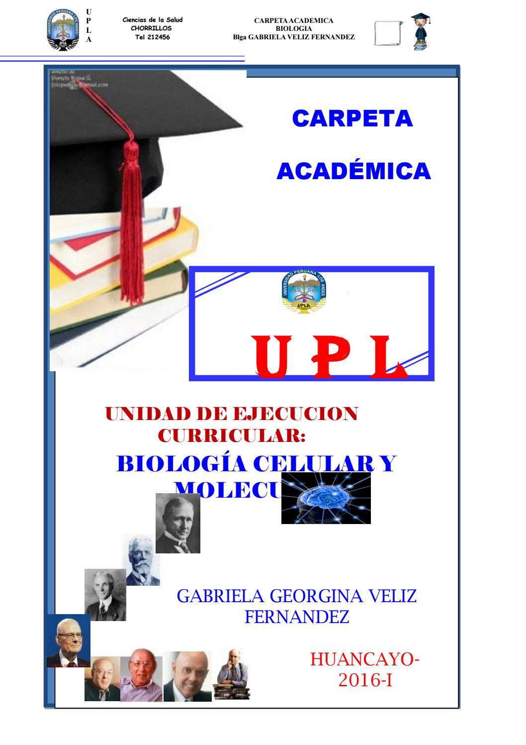 Carpeta academica psicologia by GABRIELA GEORGINA VÉLIZ FERNÁNDEZ ...