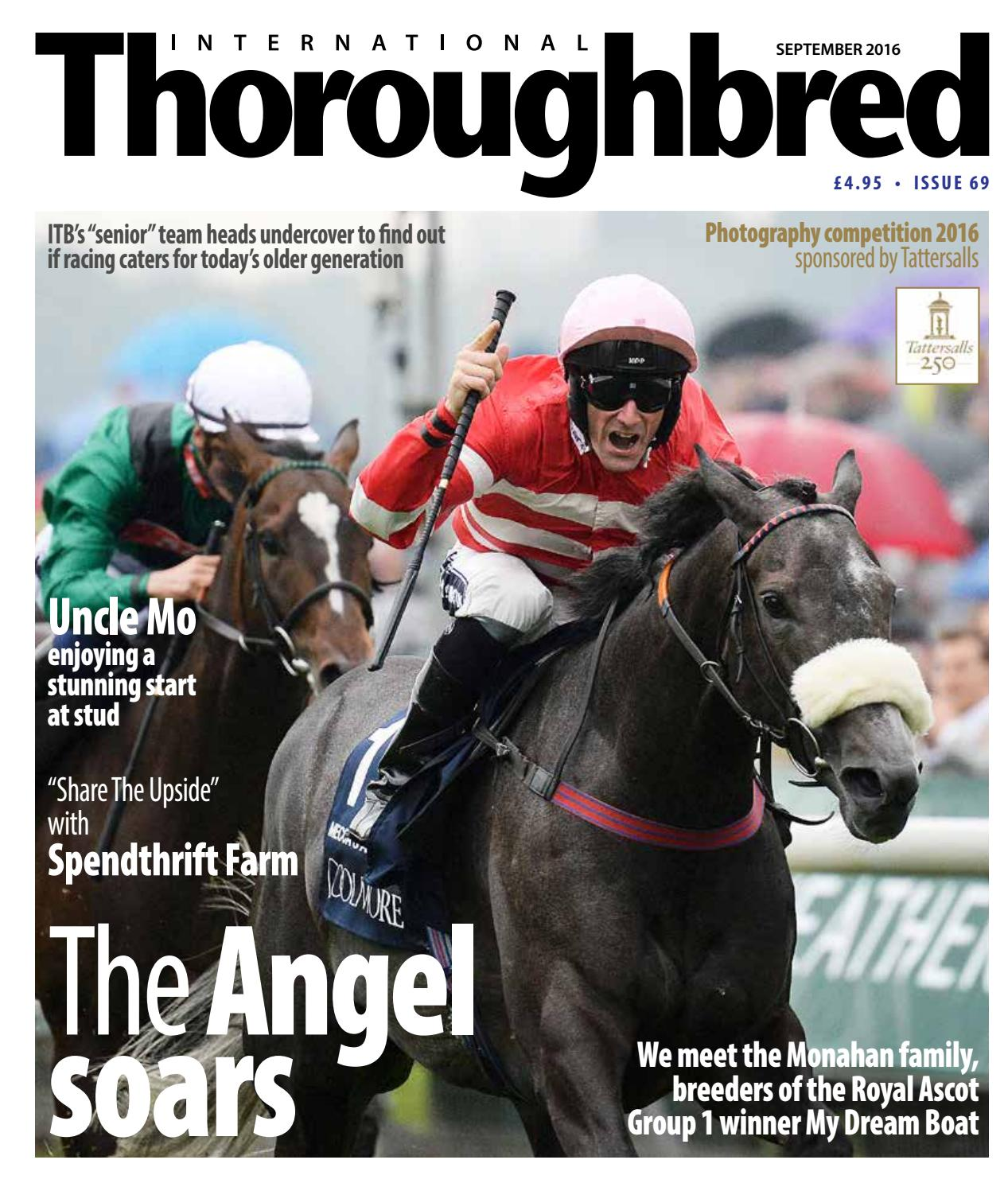 Itbseptember2016 By Thoroughbred Publishing Issuu