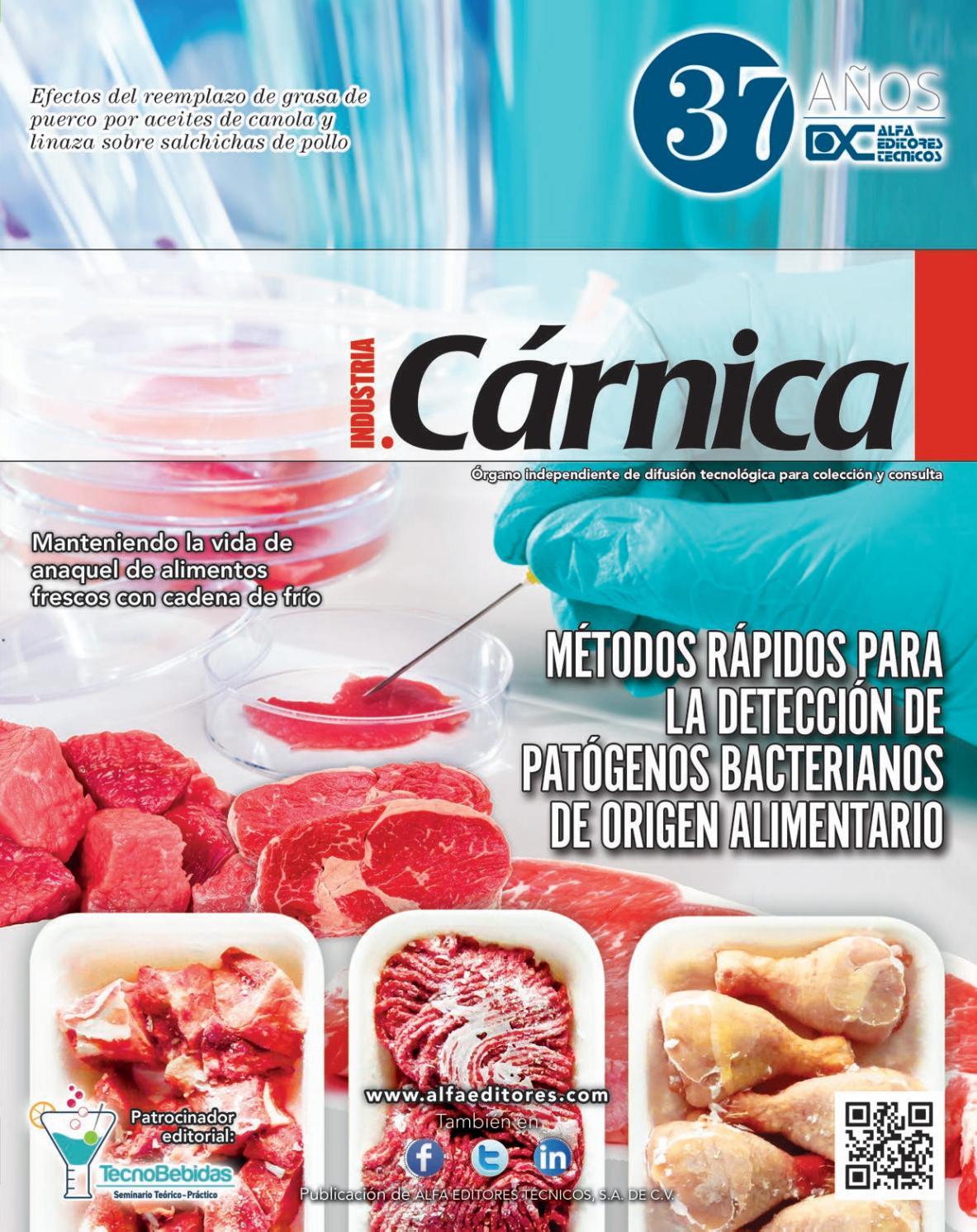 Industria Cárnica agosto-septiembre 2016 by Alfa Editores Técnicos - issuu 254bf3ce5a9