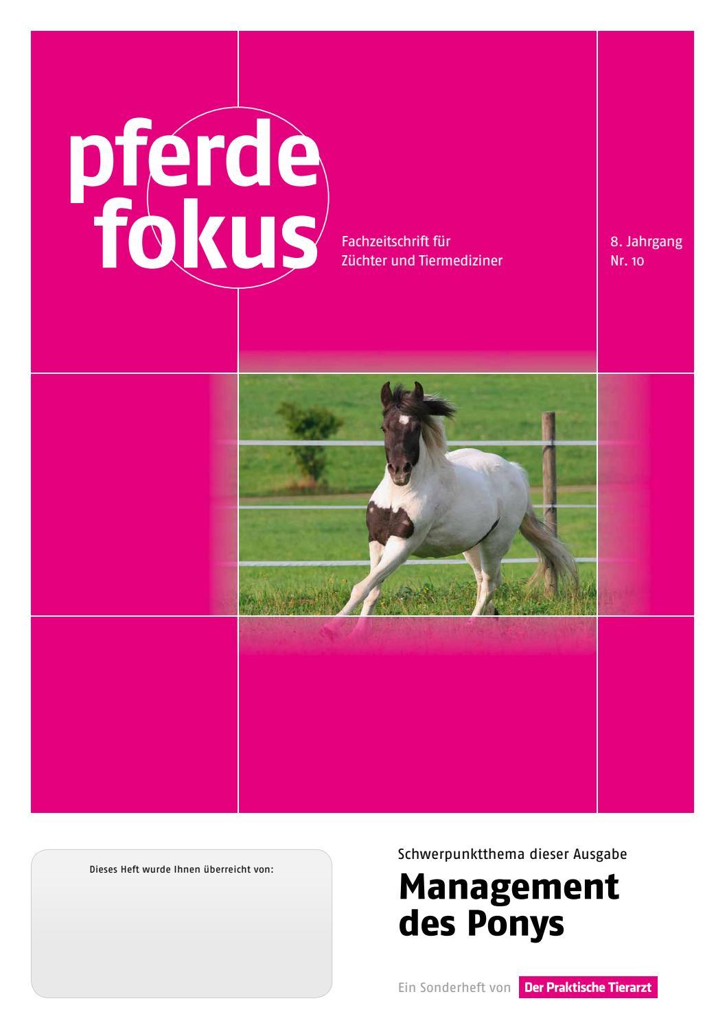 Edelstahl Mähnenkamm für Pferde handlich Pferde Kamm