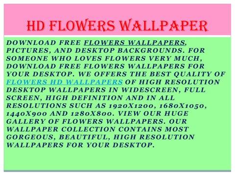 Hd Flowers Wallpaper By Techniezemp7 Issuu