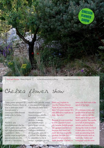 Page 75 of Chelsea Flower Show