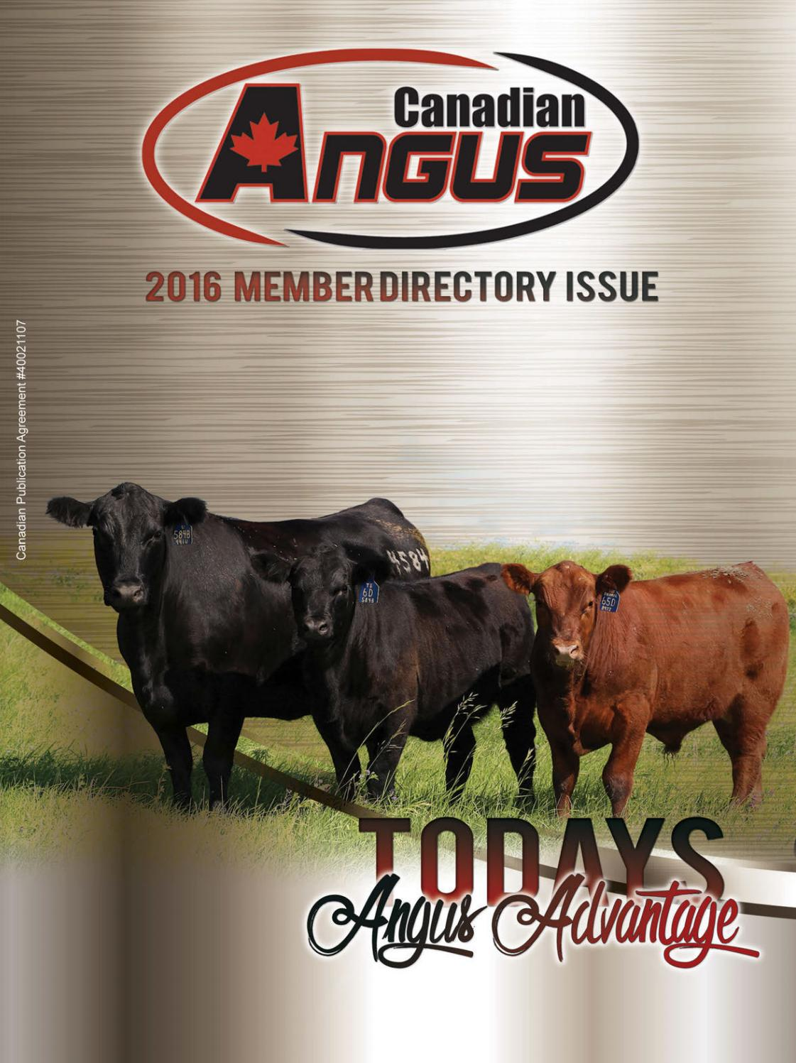 Early Fall Member Directory 2016 By Todays Publishing Inc