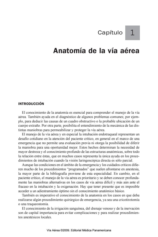Anatomia de la Via aerea SATI by Kinesio - issuu