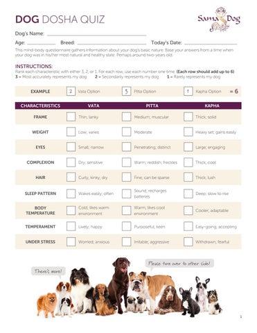 what is your dosha quiz