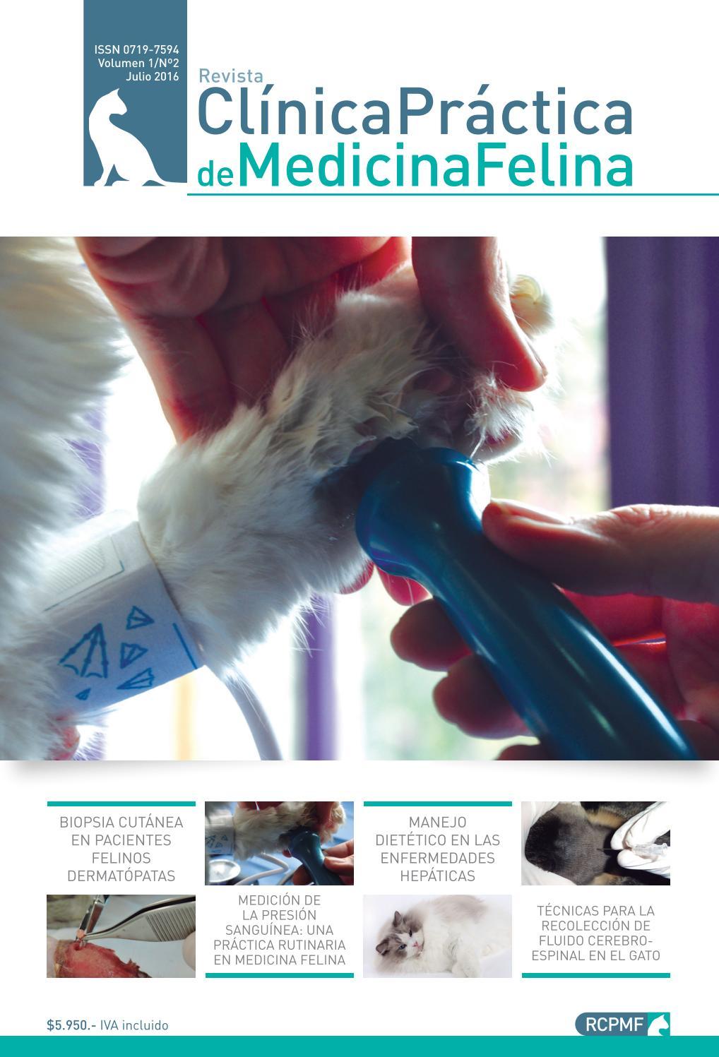 Revista Clinica Practica de Medicina Felina 02 by Revista Clinica ...