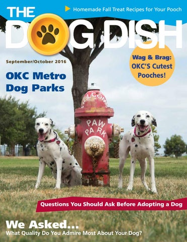 The dog dish magazine septemberoctober 2016 by the dog dish page 1 solutioingenieria Image collections