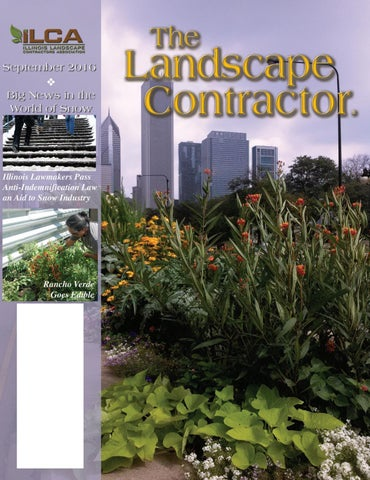 The Landscape Contractor magazine September 2016 Digital Digital ...