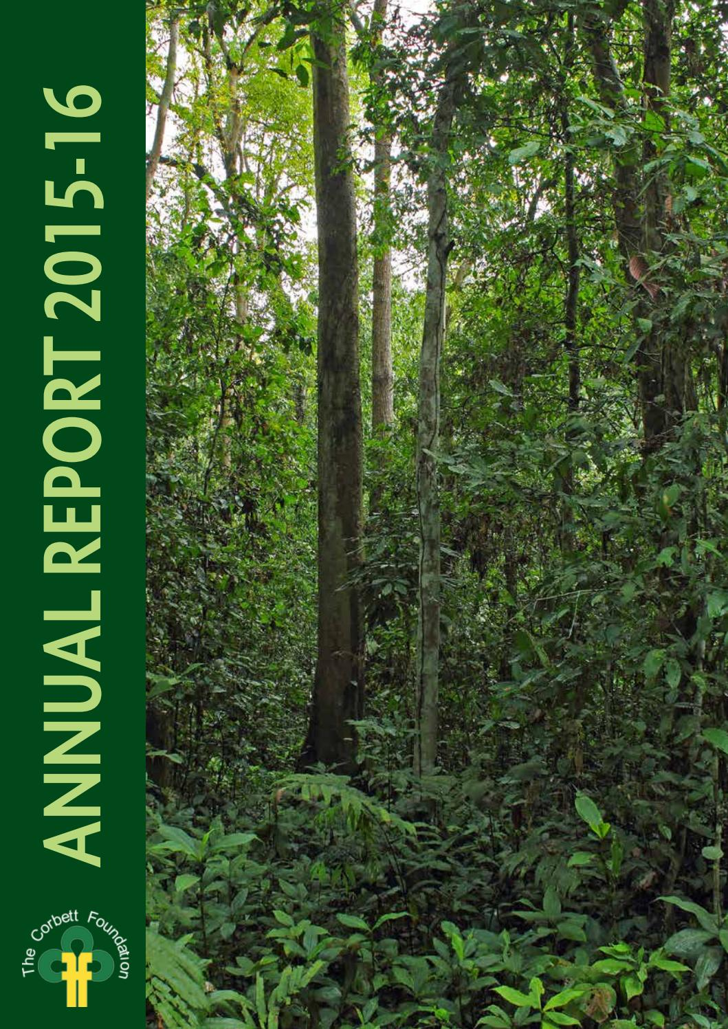 Annualreport2015 16 by The Corbett Foundation - issuu