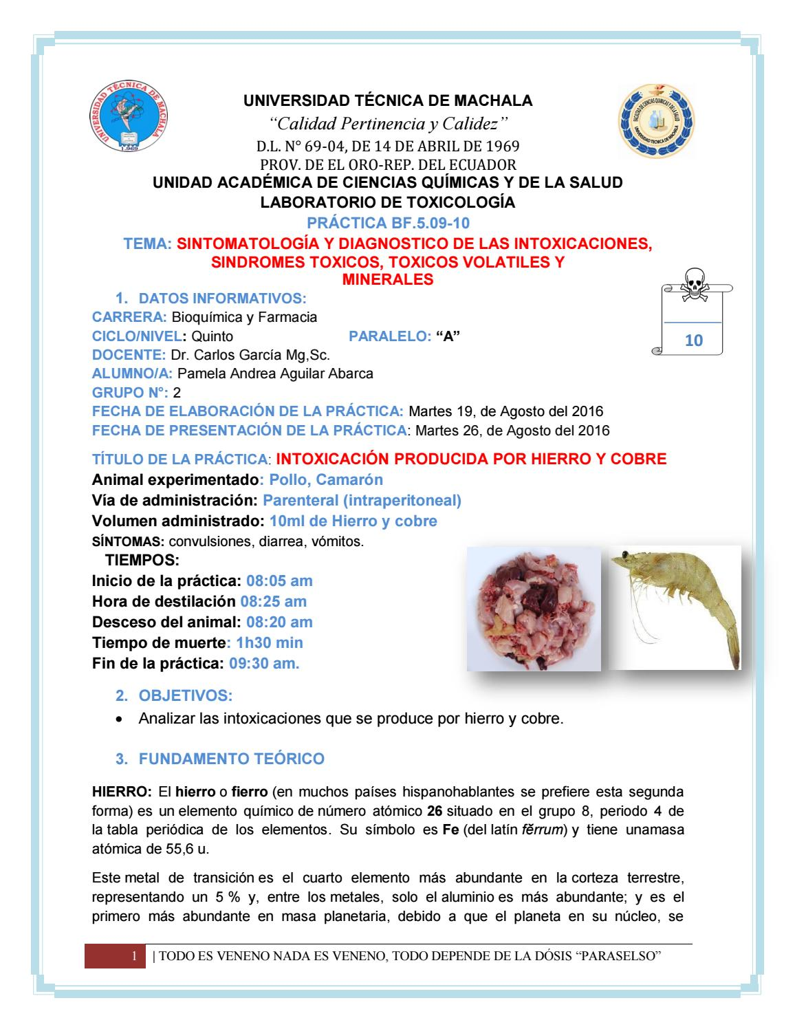 Intoxicacin por hierro y cobre by pamela aguilar issuu urtaz Images