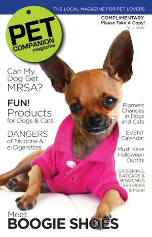 Pet companion magazine fall 2016 by petcompanionmag issuu page 1 solutioingenieria Image collections