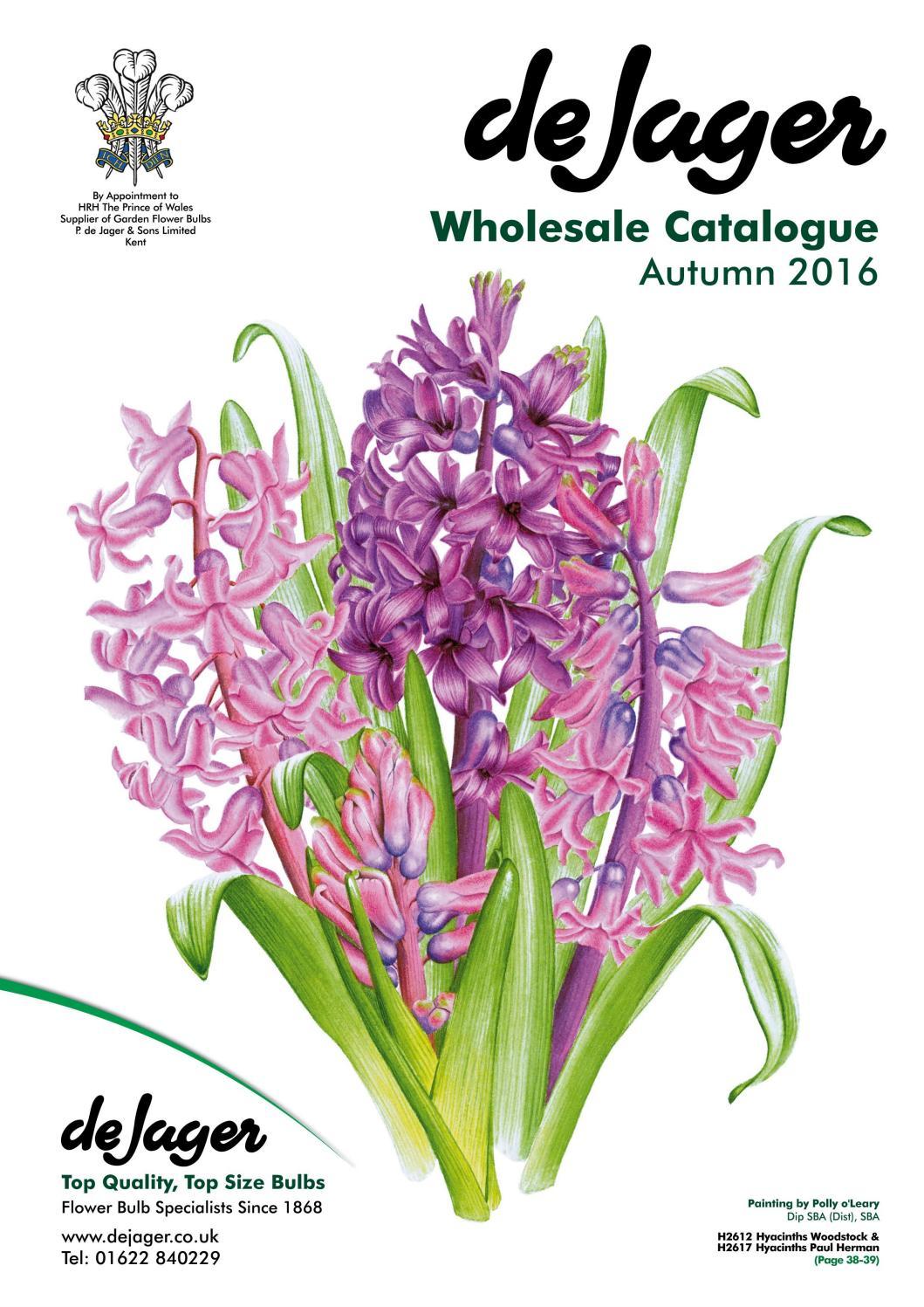 De jager bulbs wholesale catalogue autumn 2016 by emma simpson issuu mightylinksfo