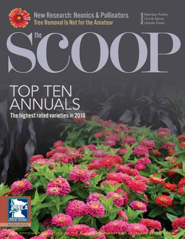 secor home decor catalog 2016 by brian secor issuu.htm the scoop online october 2016 by minnesota nursery   landscape  october 2016 by minnesota nursery