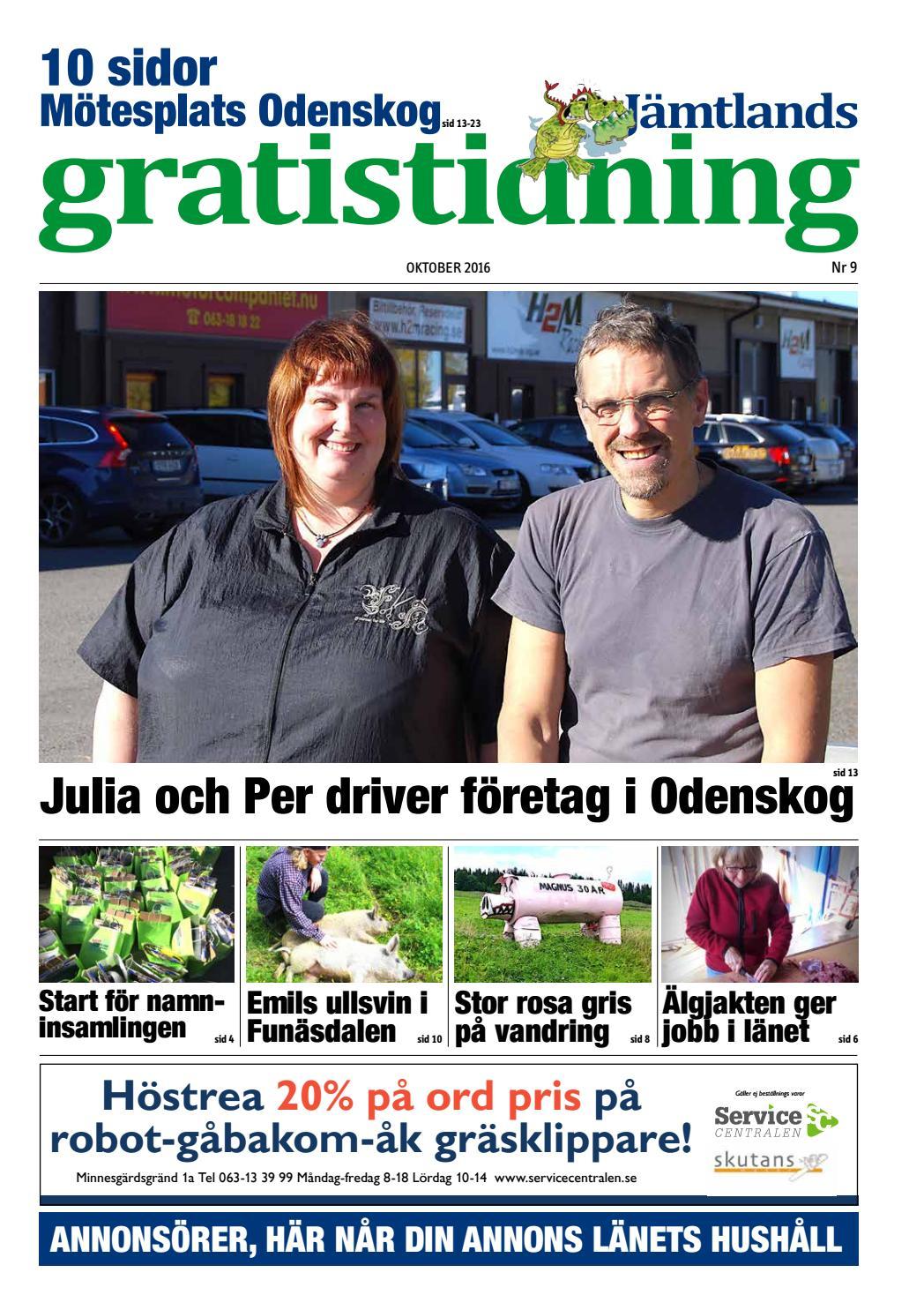 ldreboende Jmtland | Fretag | patient-survey.net | sida 3