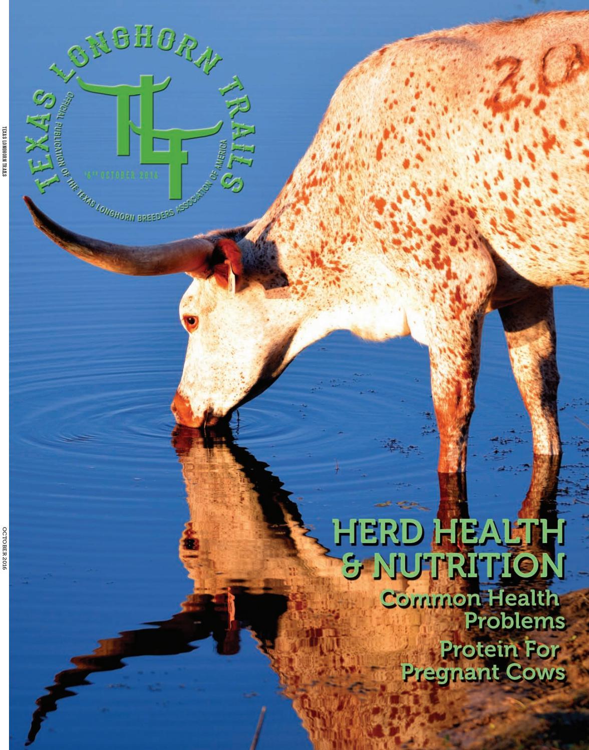 october 2016 texas longhorn trails magazine by texas longhorn