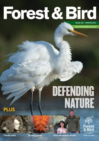 ea9fc69ac15c Forest   Bird Magazine 360 Winter 2016 by Forest   Bird - issuu