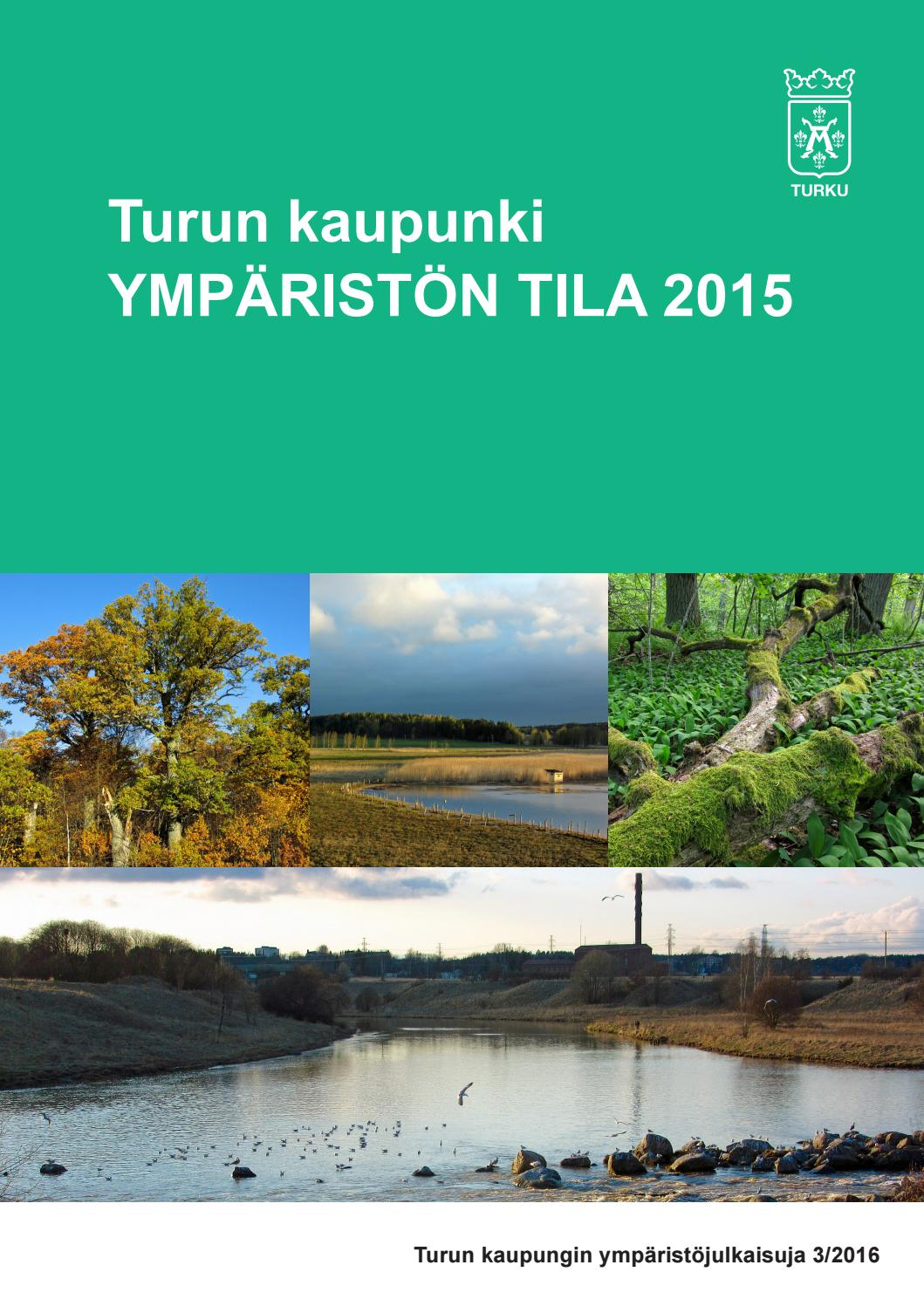 Ympariston Tila 2015 By Turun Kaupunki Abo Stad Issuu