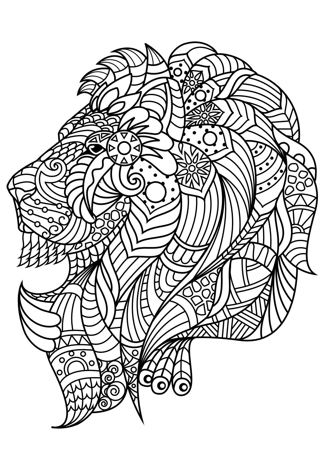 Animal coloring pages pdf by Marko Petkovic - Issuu