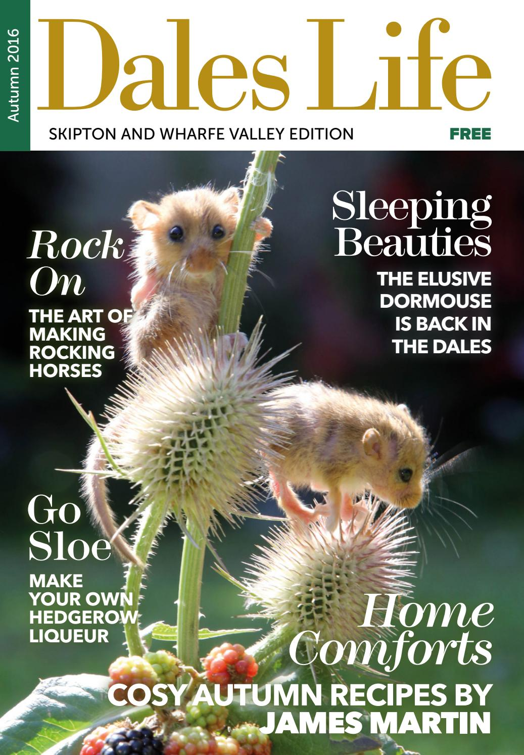 Dales Life 3 2016 Autumn South Dales Edition by Dales Life - issuu d4af1907f
