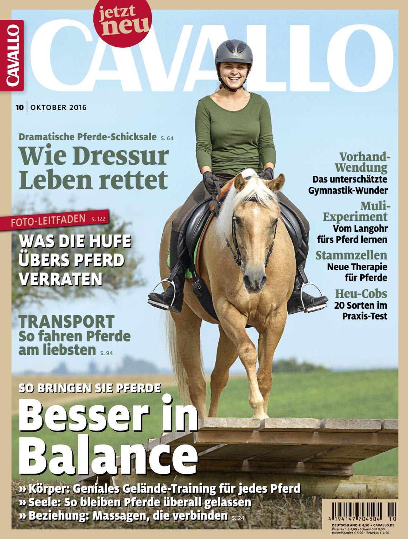 VB  Sehr lang  Schnelle DHL Lieferung NEU Westernzügel Natur Braun Schwarz WB