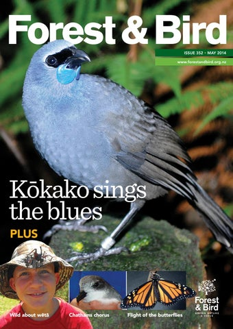 Forest U0026 Bird Magazine 352 May 2014 By Forest U0026 Bird   Issuu
