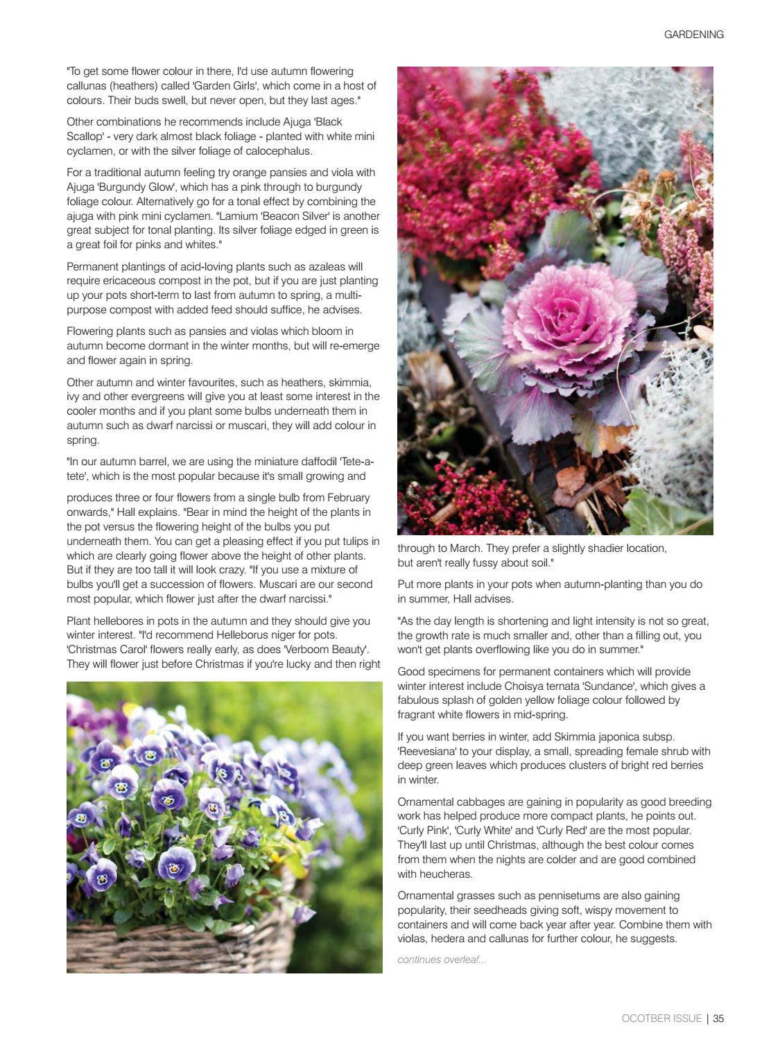 b4e07273 The Jersey Life - October. HOME LIVING ISSUE by The Jersey Life - issuu