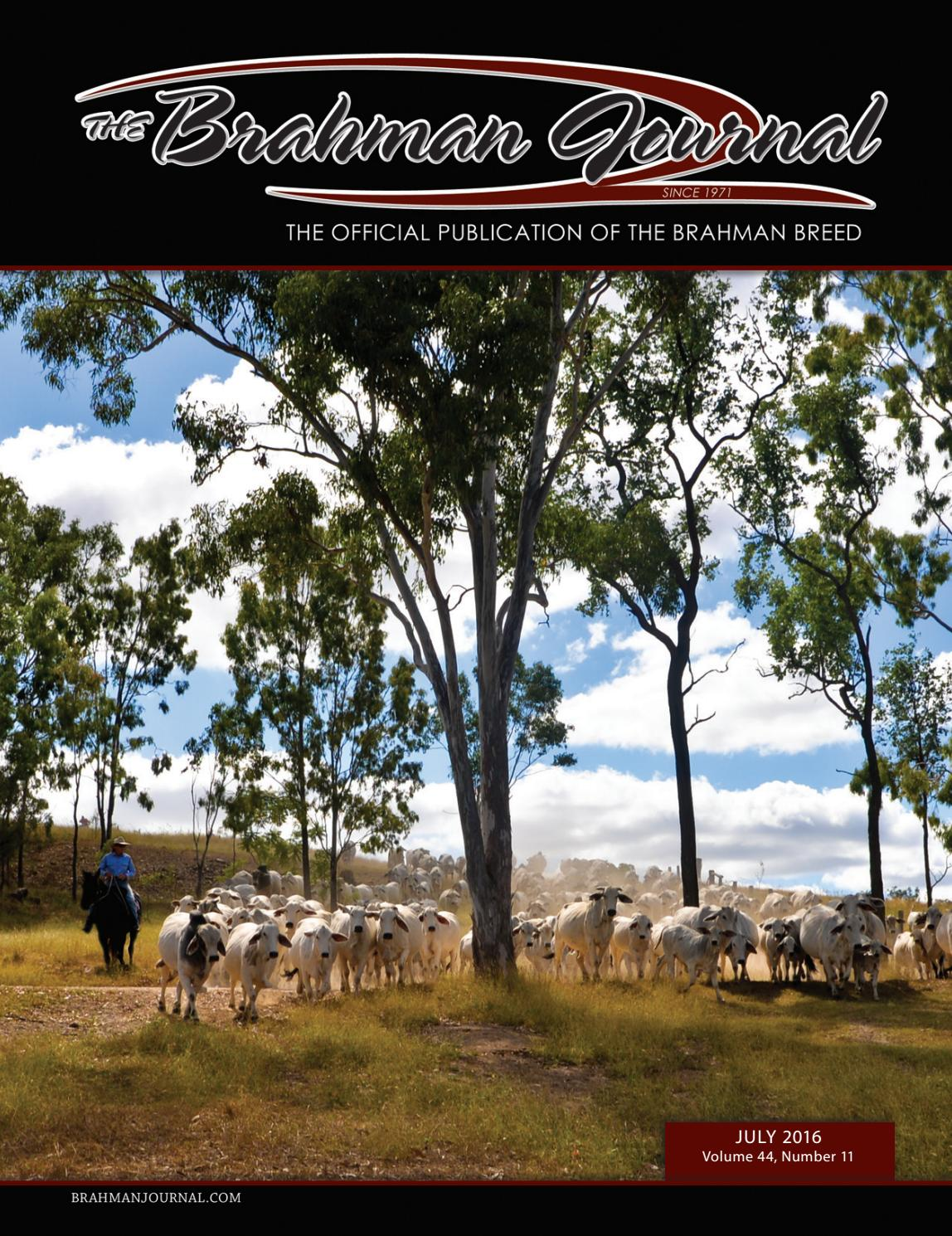The Brahman Journal - July 2016 by Caballo Rojo Publishing - The ...