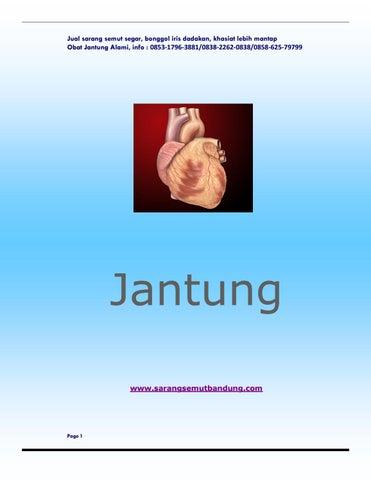 Jantung by Indra al faatih - issuu