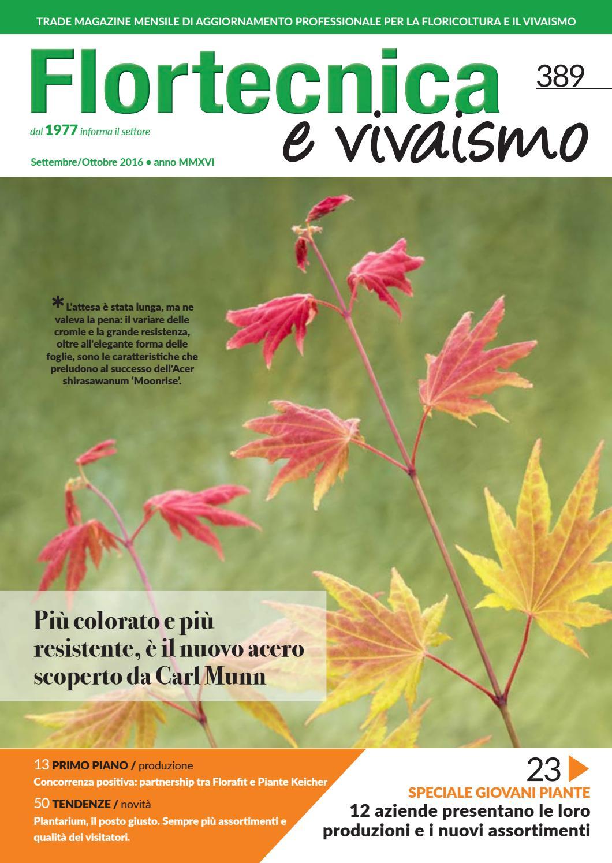 Acero Radici Invasive flortecnica e vivaismo n.389 settembre/ottobre by edizioni