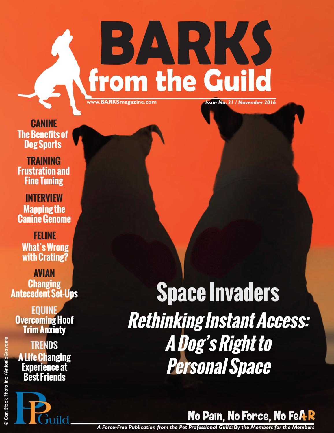 0495def75a BARKS from the Guild November 2016 by The Pet Professional Guild - issuu