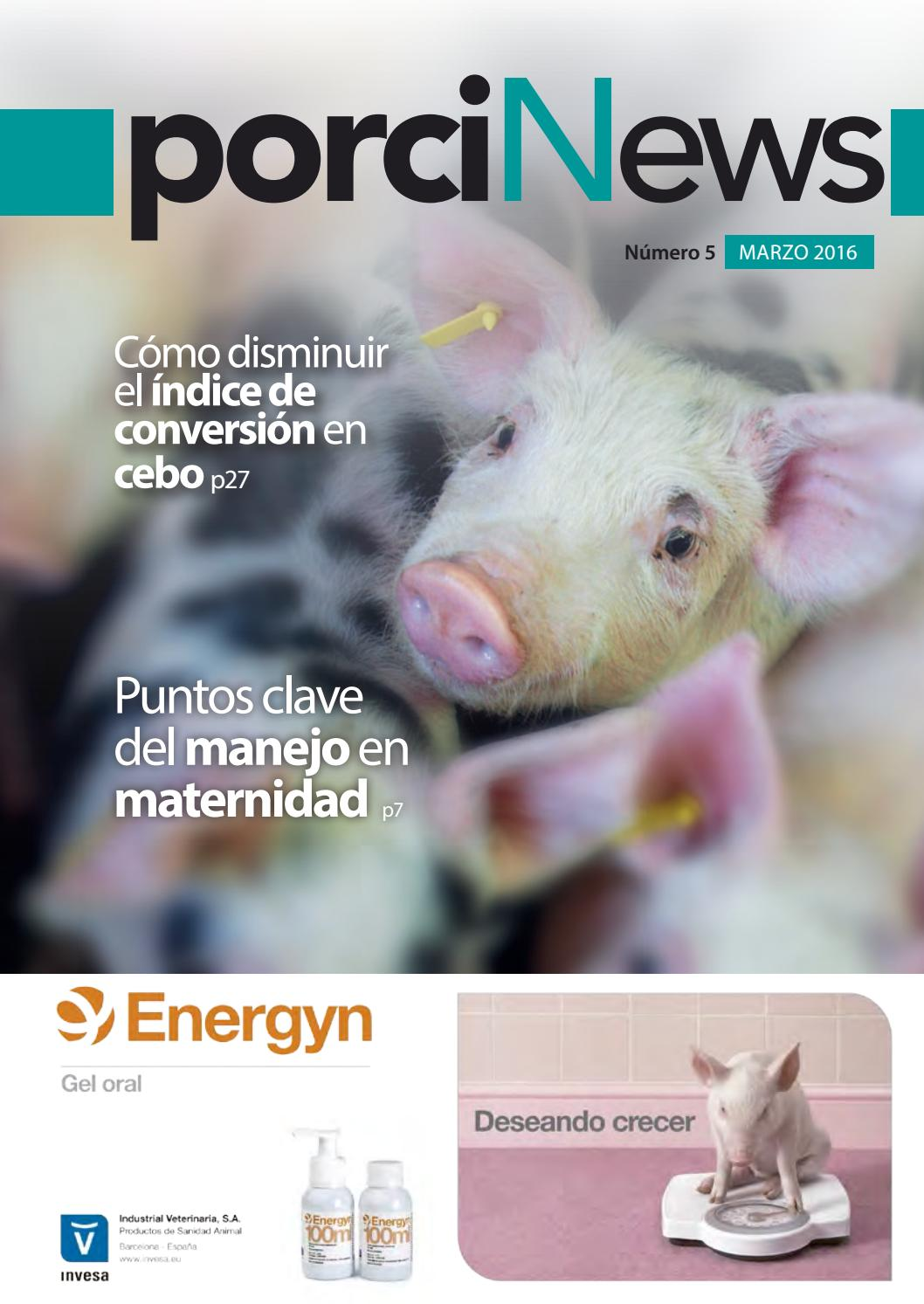 Porcinews marzo 2016 by agrinews - issuu