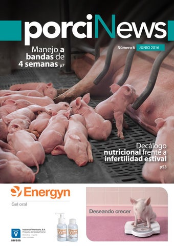 Porcinews junio 2016 by agrinews - issuu