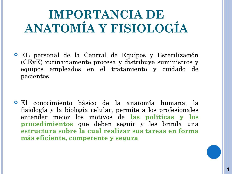 4 anatomia y fisiologia by Carlos Martinez - issuu