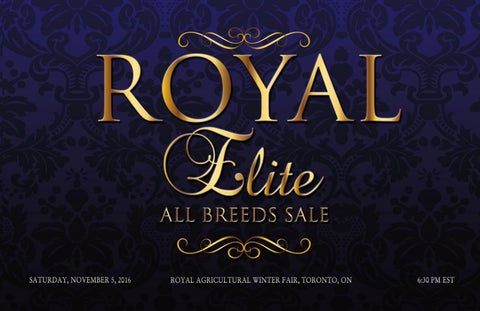 Royal Elite All Breeds Sale 2016 by Today's Publishing Inc  - issuu