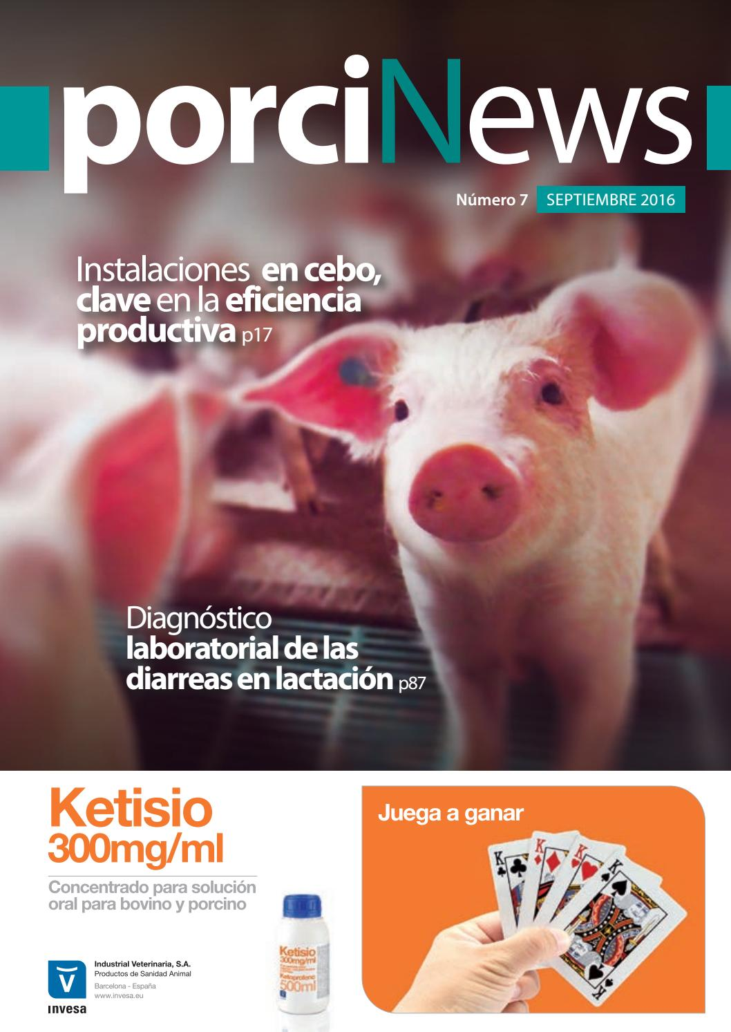 Porcinews marzo 2017 by agrinews - issuu