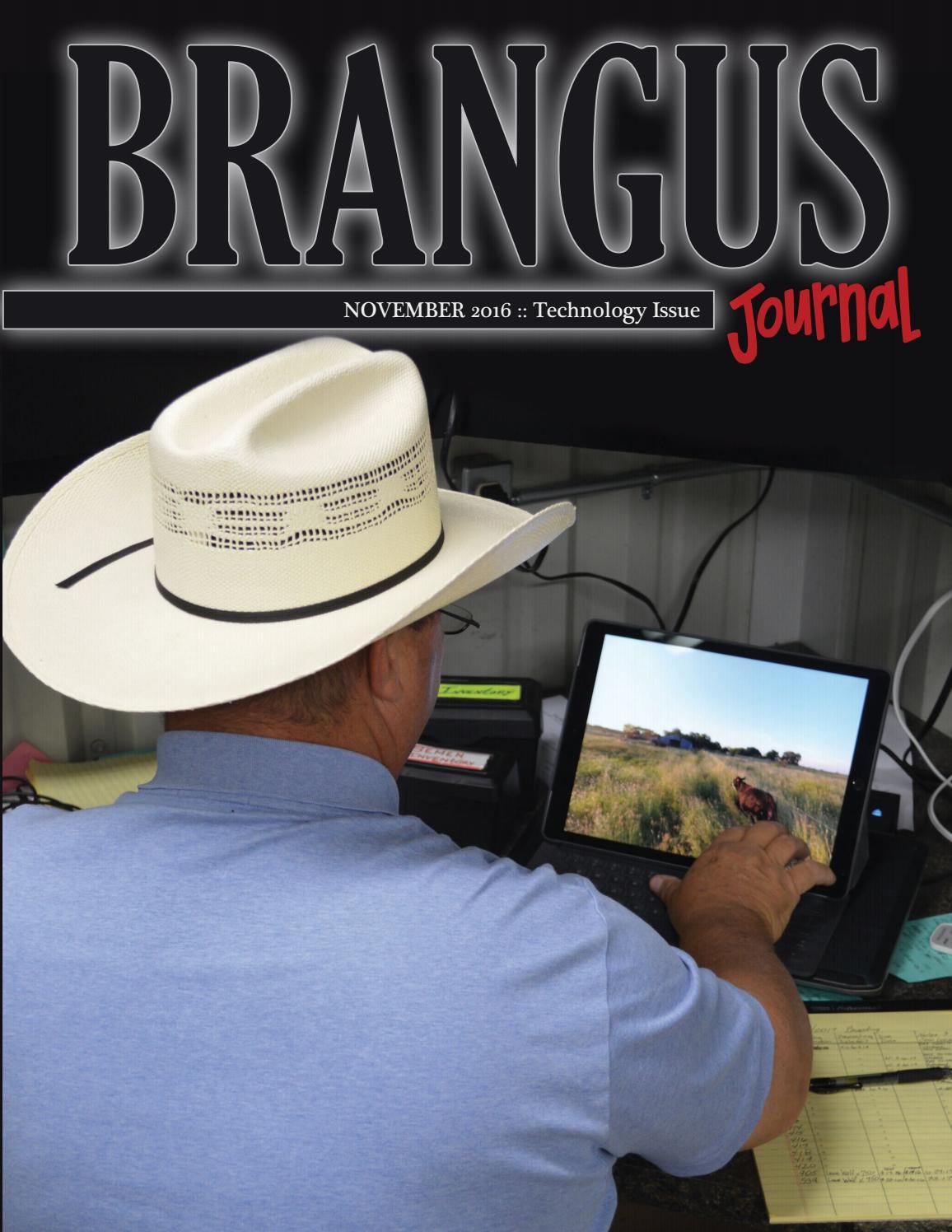 6f9182927d3 November 2016 Brangus Journal by International Brangus Breeders ...