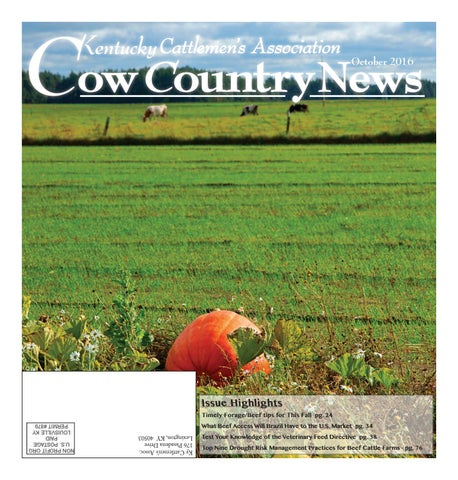 secor home decor catalog 2016 by brian secor issuu.htm cow country news october 2016 by the kentucky cattlemen s  cow country news october 2016 by the