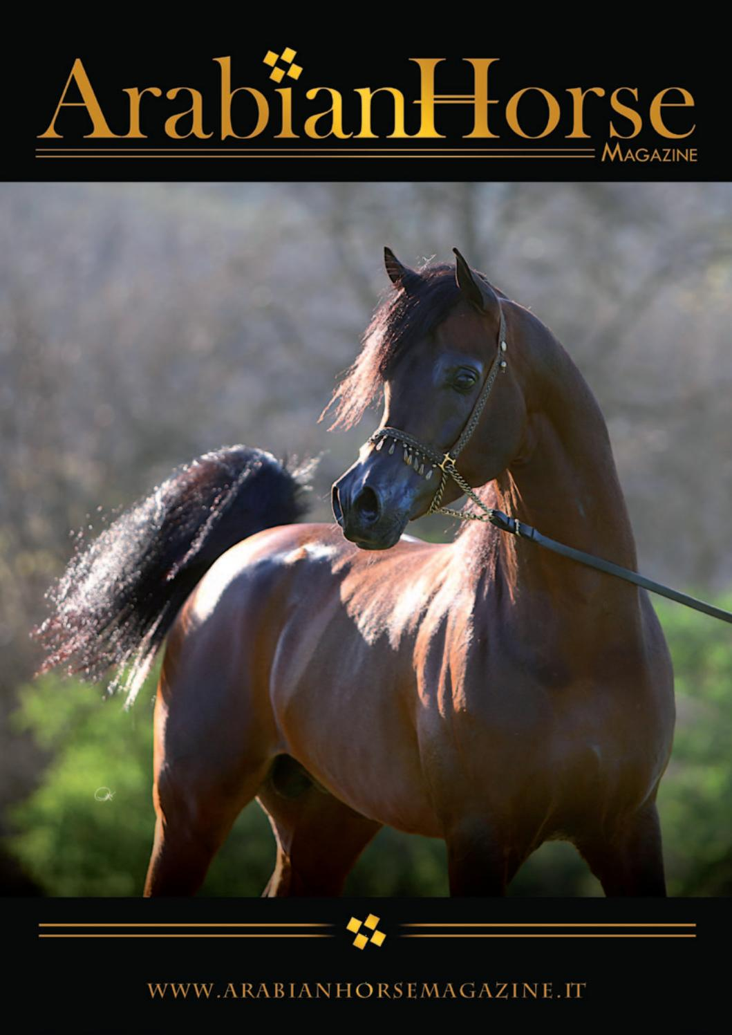 disagio del cavallo pass texas