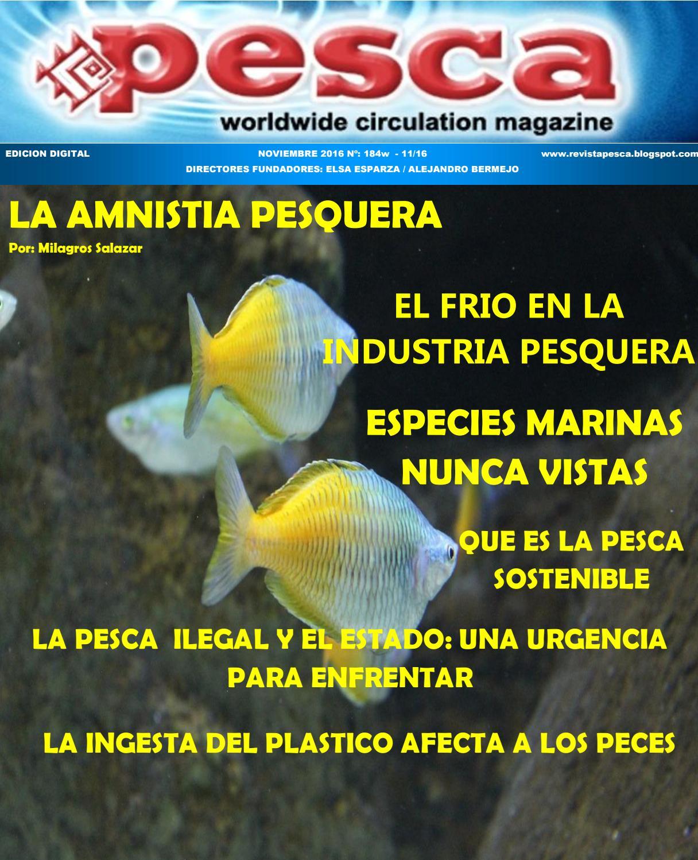 Revista Pesca noviembre 2016 by Marcos Kisner - issuu