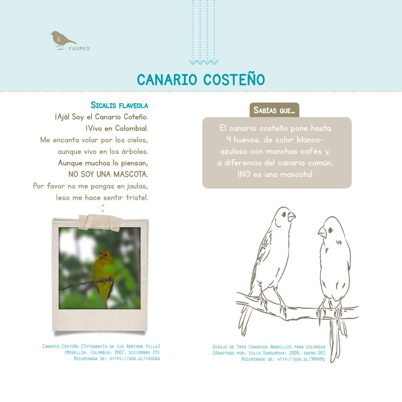Cartilla 1 proyecto de educación ambiental by Programa Gestión de ...