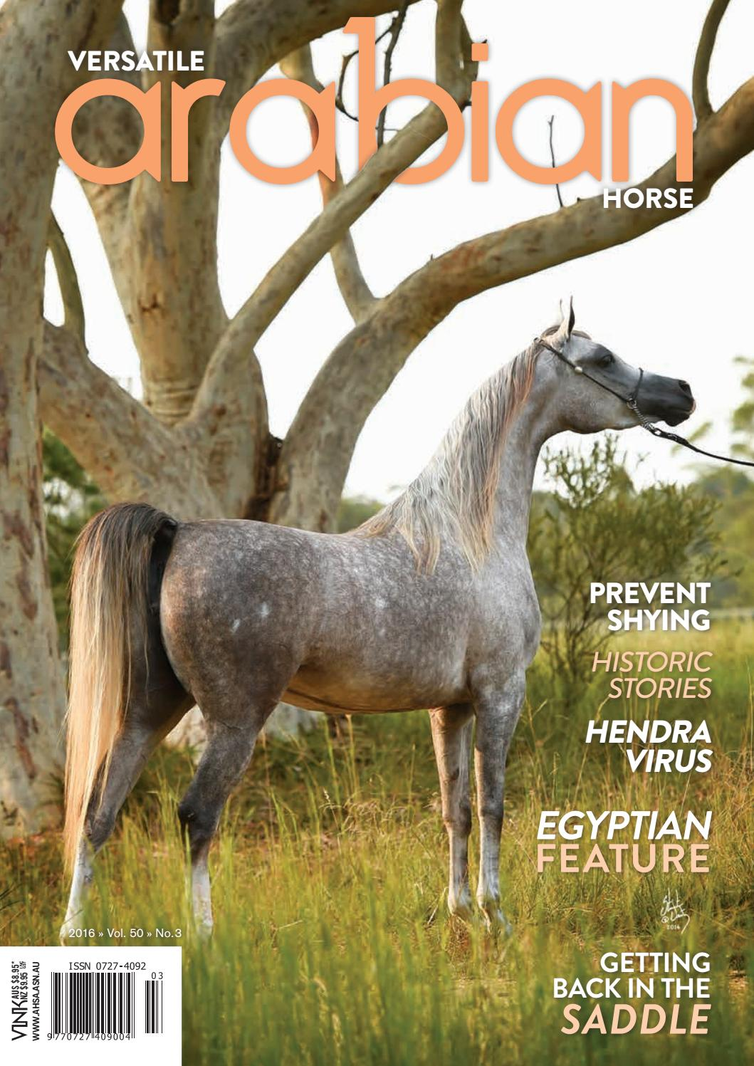 Animal Came In Her Mouth Porn versatile arabian horse sept16vink publishing - issuu
