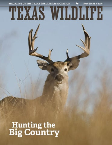 texas wildlife november 2016 hunting the big country by texas