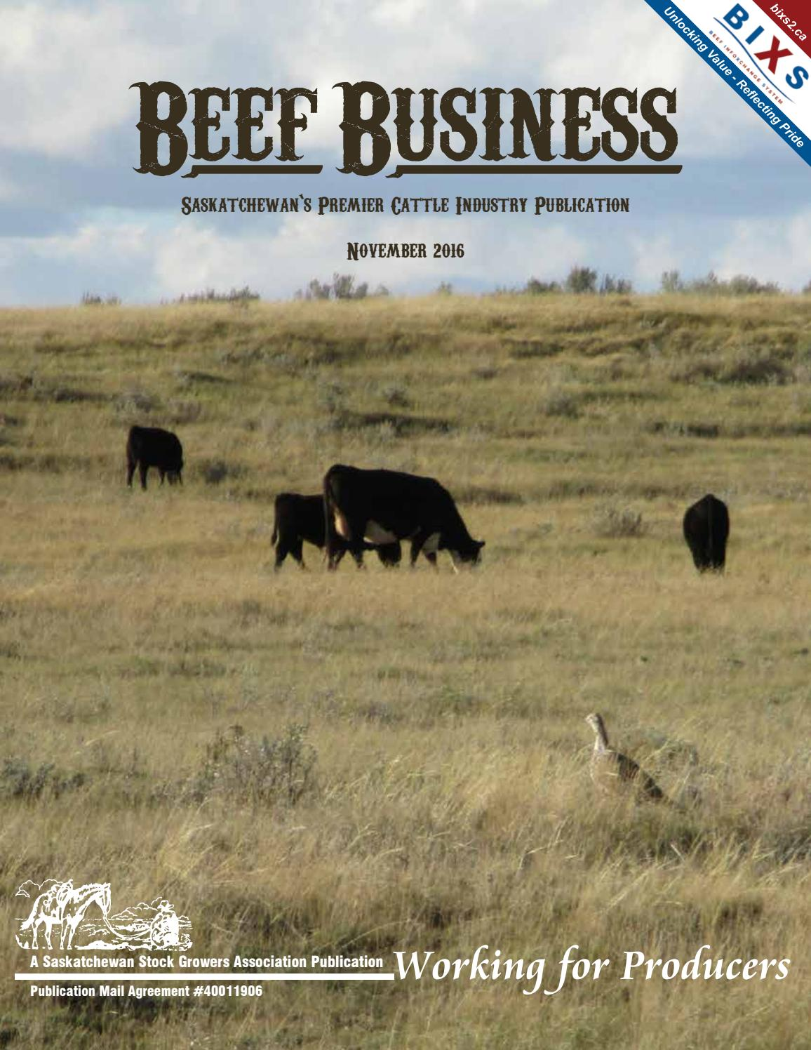 Beef business november 2016 by saskatchewan stock growers beef business november 2016 by saskatchewan stock growers association issuu aiddatafo Choice Image