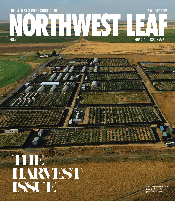 Nov. 2016 — Issue #78 by Northwest Leaf / Oregon Leaf / Alaska Leaf ...